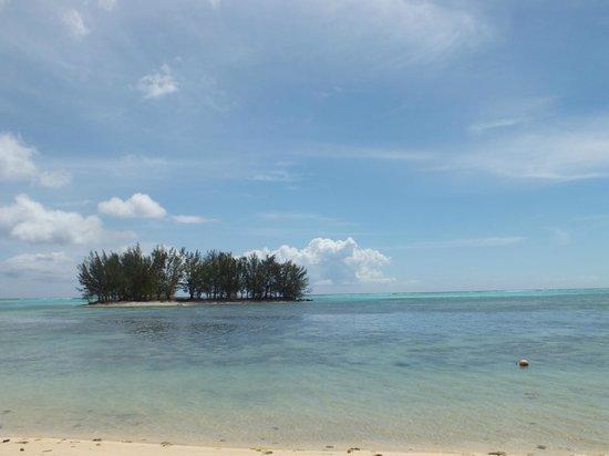 Moorea Fare Miti: Vue de la plage