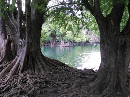 Lake Camecuaro: Just a very comfortable place to visit.