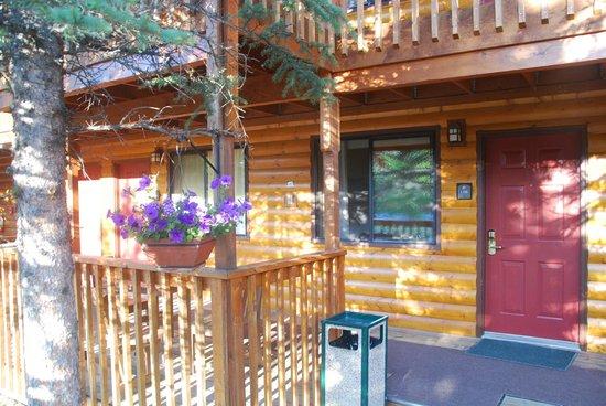 Denali Princess Wilderness Lodge: Guest room