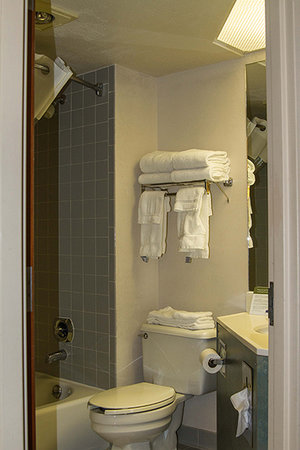 AmericInn Lodge & Suites Madison West : Bathroom in king room with sofa