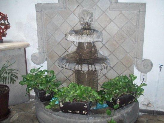 Mexico City Hostel: Fountain