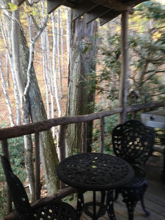 Banner Haven B&B and Cabin Rentals: Back Porch