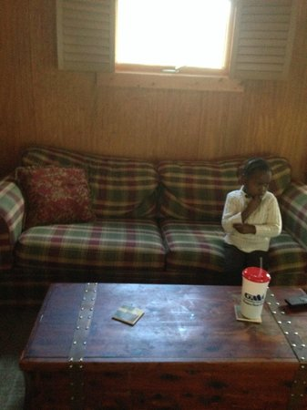 Banner Haven B&B and Cabin Rentals : Living room (pullout sofa)