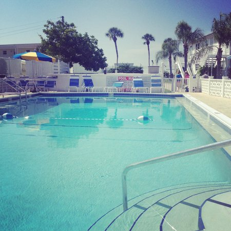 Sea Crest Apartments on Siesta Key : Beautiful heated pool