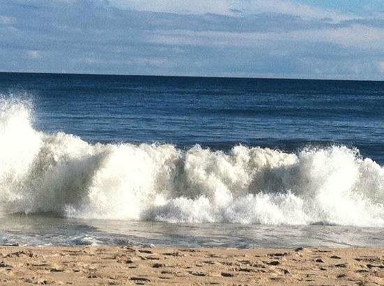 Hartman's Briney Breezes Motel: Beach