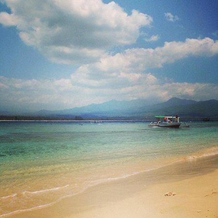 Manta Dive Gili Air Resort: Paradise!!