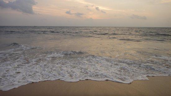 Abad Turtle Beach : The Beach