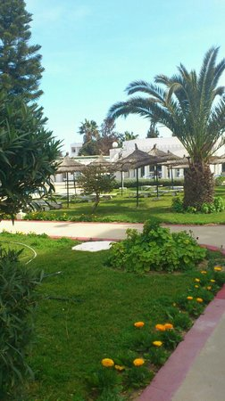 Jinene Beach & El Jinene: Hotelanlage