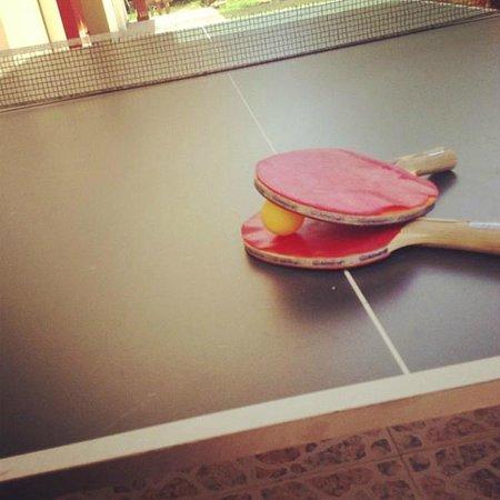 Stavris Studios : Table Tennis FREE