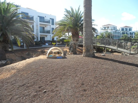 Las Marismas de Corralejo: Cat Cafe, area where you can feed the cats and where the hotel provides food for them