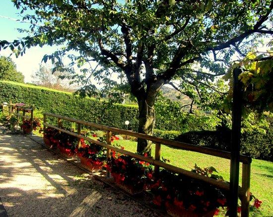 B&B Le Terrazze: Side gardens