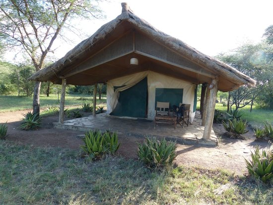 Serengeti Tented Camp - Ikoma Bush Camp: Ansicht