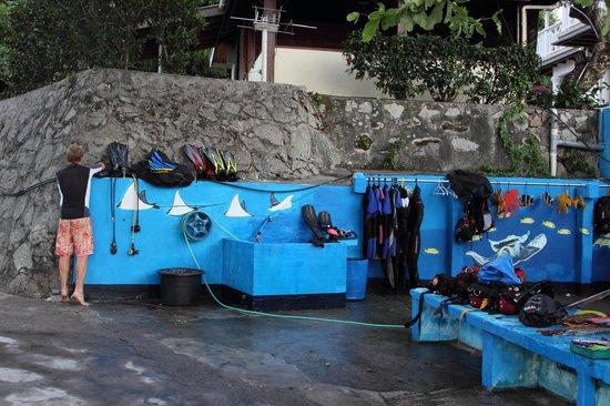 Big Blue Divers: dive center
