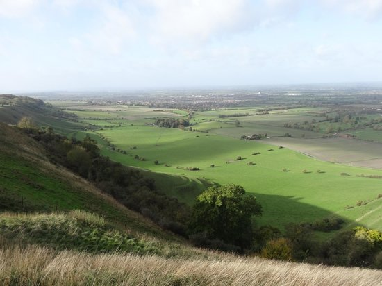 Westbury White Horse: view from the top