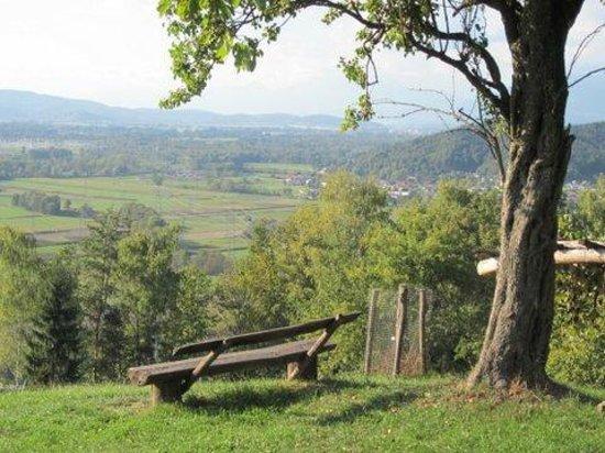 Pri Lazarju: Hilltop view