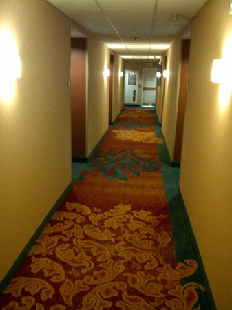 Residence Inn Mississauga-Airport Corporate Centre West: Hallway