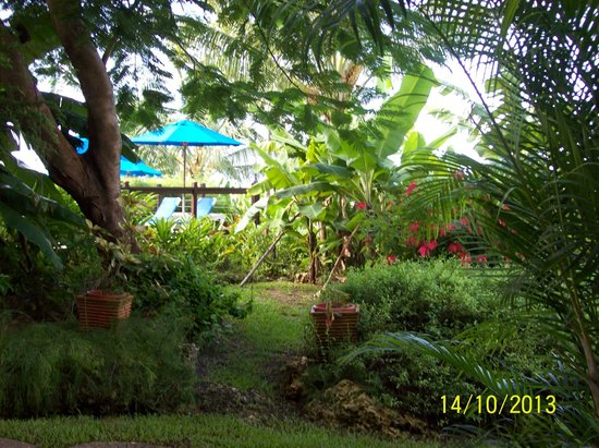 Beach View: the beautiful tropical gardens on your way to the pool