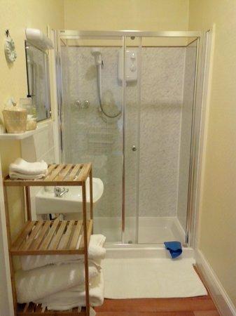 St Ann's House: Bathroom from the family room