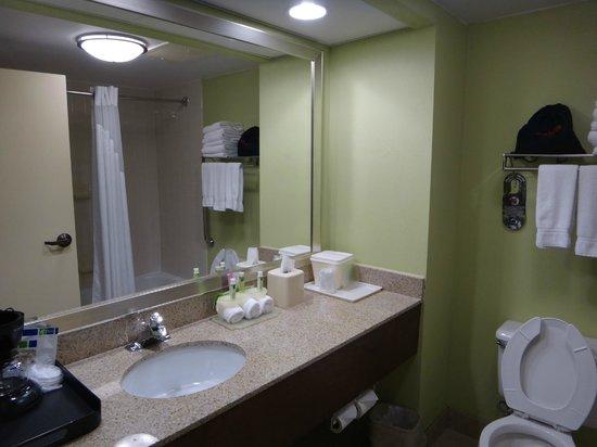 Holiday Inn Express Greenville: Guest Bathroom