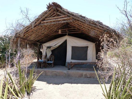Tindiga Tented Camp: Ansicht