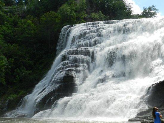 Ithaca Falls Natural Area: Ithaca Falls