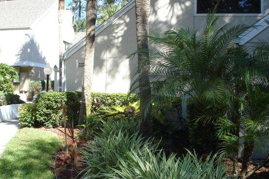 Residence Inn Orlando Altamonte Springs/Maitland: Another exterior view