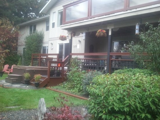 The Funky Frog B&B: backyard and hot tub