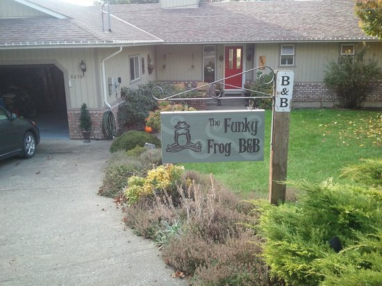 The Funky Frog B&B: front yard