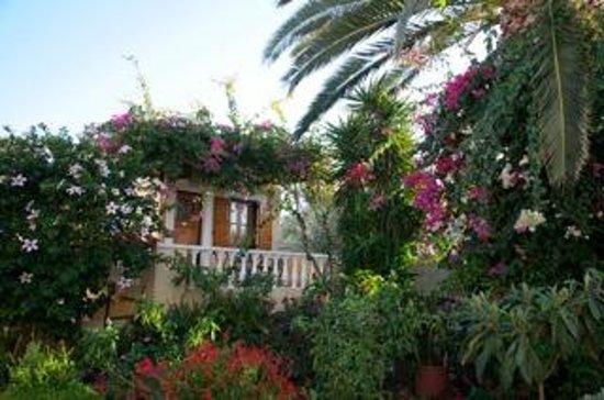Olympia Village Hotel: Appartementhaus/Garten