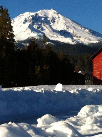McCloud River Inn: Mt. Shasta