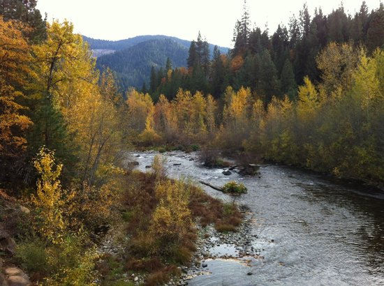 McCloud River Inn: The McCloud River in the Fall