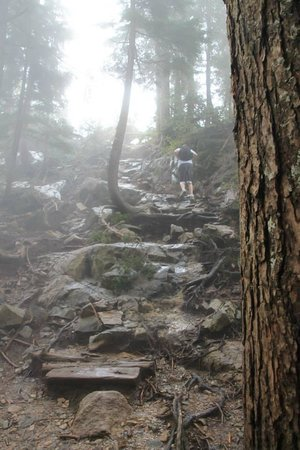 The Grouse Grind: the end of the grind