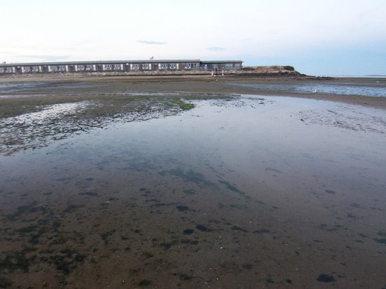 Provincetown Inn Resort & Conference Center: View of inn across tidal flats