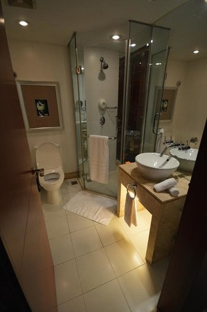 Mercure Xian on Renmin Square : Bathroom
