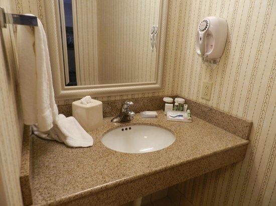 Hilton Garden Inn Elmira / Corning: Vanity