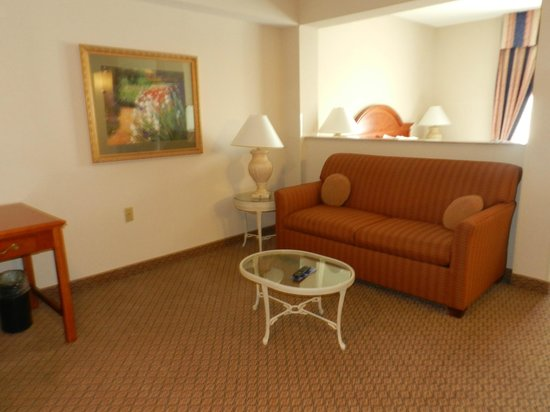 Hilton Garden Inn Elmira / Corning: Sitting Area