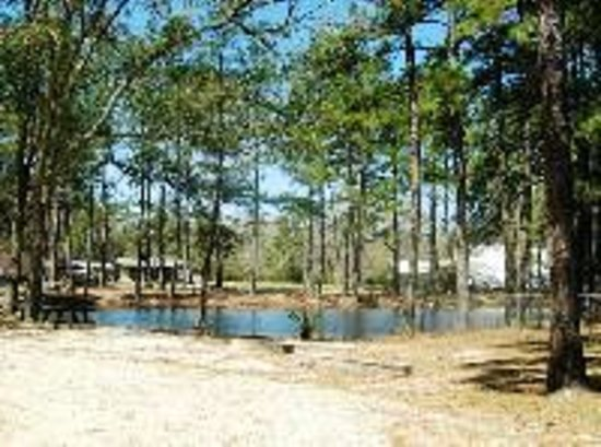 Land-O-Pines Family Campground: Fishing Pond