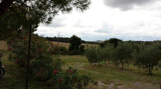Locanda Il Boschetto: Garden