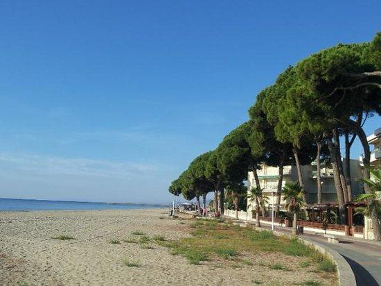 Estival Centurion Playa: la promenade devant l'hôtel