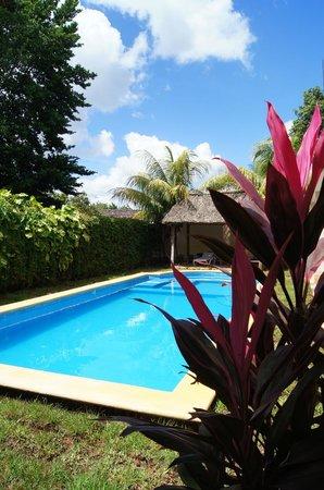 Hotel Tunich Beh: Pool