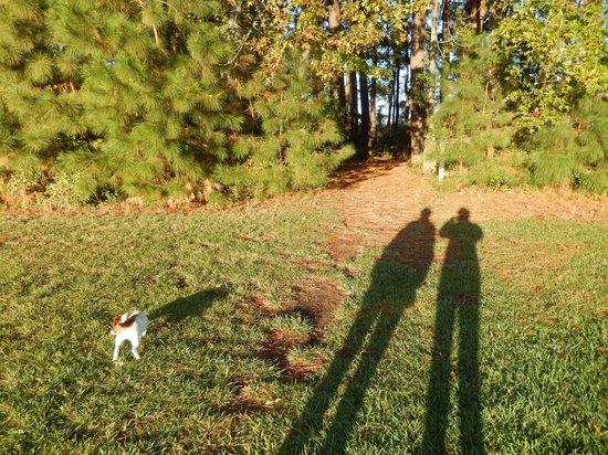 Inn at Huntingfield Creek: Walk w/the dogs to creek/bay.
