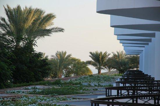 Jaz Fanara Resort & Residence : вид с балкона... практически sea view