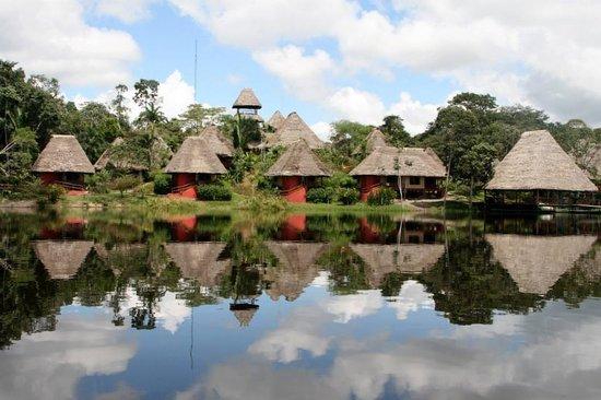 Napo Wildlife Centre: The lodges from the lake