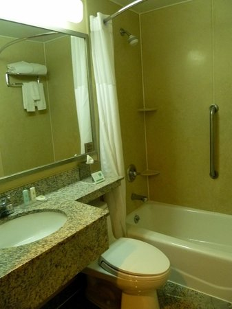 Comfort Inn Times Square South : Il bagno