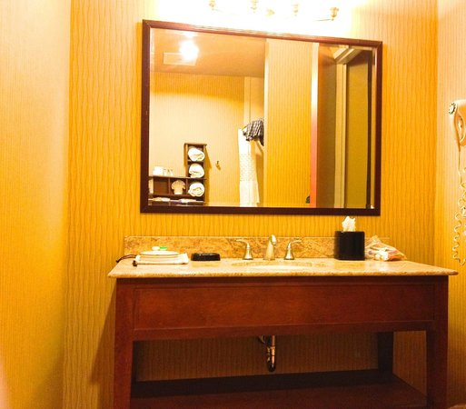 Hampton Inn West Palm Beach Florida Turnpike: Well appointed bathroom