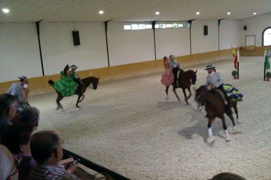 Centro de Equitación El Ranchito: riding