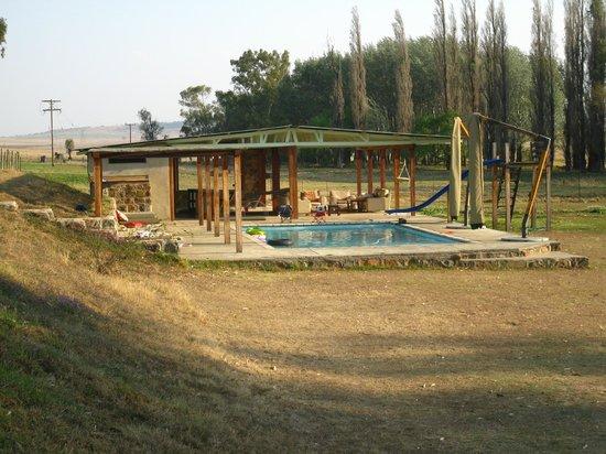 Dalmore Farm Guest House: Pool