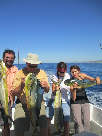 8ft 150lbs picture of cabo fishing charters cabo san for Los cabos fishing charters