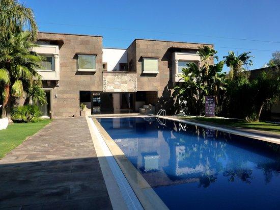 Casa Dell'Arte : Swimming Pool