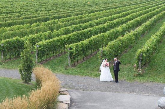 Vignoble Rivière du Chêne Winery